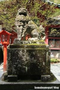 箱根神社(神奈川県足柄下郡箱根町元箱根)31