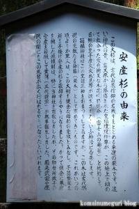 箱根神社(神奈川県足柄下郡箱根町元箱根)49