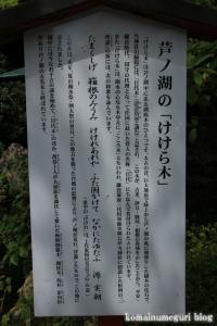 箱根神社(神奈川県足柄下郡箱根町元箱根)68