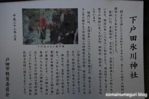 下戸田氷川神社(戸田市中央)15
