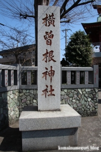 横曽根神社(川口市南町)3