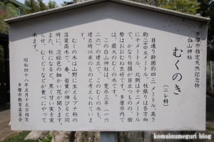 白山神社(多摩市連光寺)5