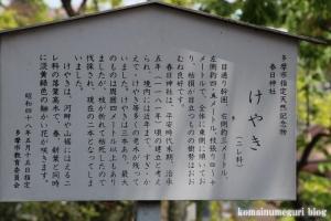 春日神社(多摩市連光寺)5