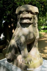 入谷氷川神社(足立区入谷)18