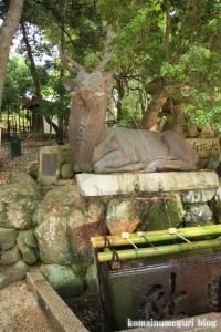 春日大社(奈良市春日井町)84