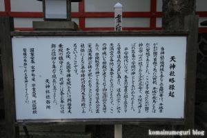 天神社(奈良市高畑町)4