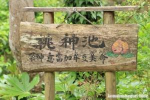 等彌(とみ)神社(桜井市桜井)22