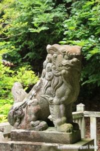 等彌(とみ)神社(桜井市桜井)64