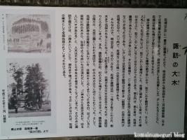 東照宮・諏訪神社(行田市本丸)49