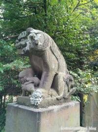 東照宮・諏訪神社(行田市本丸)42