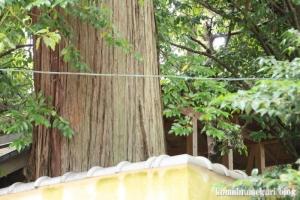 若櫻(わかさ)神社(桜井市谷)21