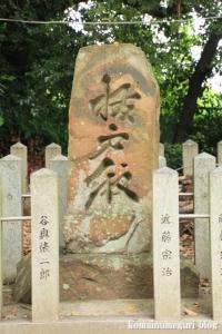 若櫻(わかさ)神社(桜井市谷)9