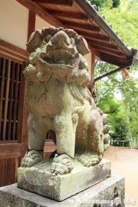 若櫻(わかさ)神社(桜井市谷)13