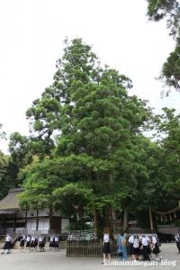 大神(おおみわ)神社(桜井市三輪)30[1]