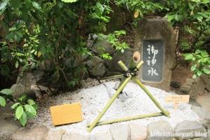 大神(おおみわ)神社(桜井市三輪)54