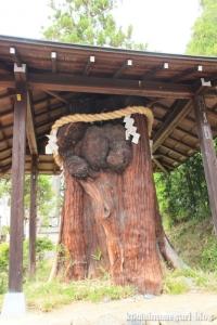 大神(おおみわ)神社(桜井市三輪)71