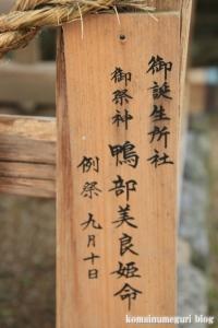 大神(おおみわ)神社(桜井市三輪)80