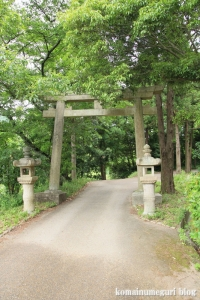 大兵主(だいひょうず)神社(桜井市穴師)2