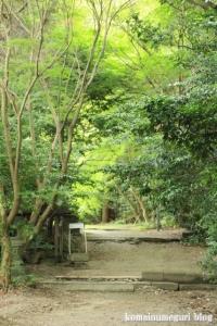 大兵主(だいひょうず)神社(桜井市穴師)5