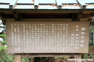大和神社(天理市新泉町)8
