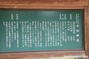 大和神社(天理市新泉町)18