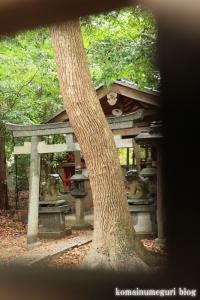 天武神社(奈良市七条)9