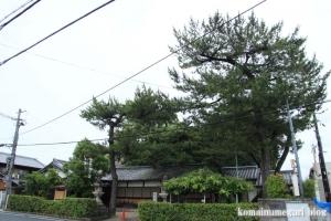 春日神社(奈良市二条大路南)13