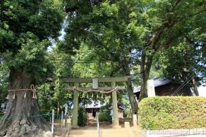 砂氷川神社(川越市砂)1