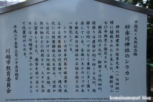 砂氷川神社(川越市砂)6