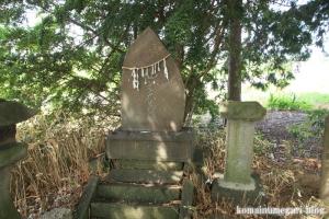 南田島氷川神社(川越市南田島)14