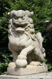 南田島氷川神社(川越市南田島)7