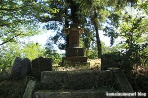 氷川神社(川越市大中居)13