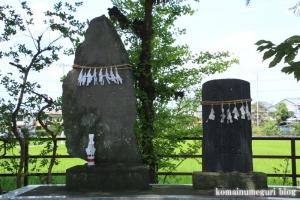木野目稲荷神社(川越市木野目)9