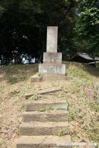氷川神社(川越市古谷郷上組)18