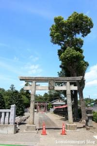 古尾谷八幡神社(川越市古谷本郷下組)1