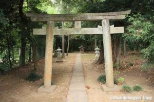 穂積神社(さいたま市西区峰岸)8