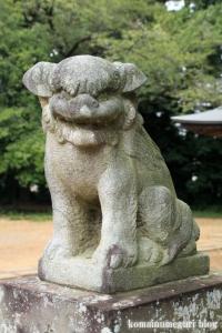 秋葉神社(さいたま市西区中釘)5