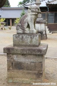 秋葉神社(さいたま市西区中釘)8