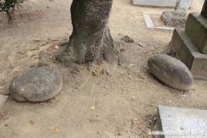 氷川神社(さいたま市西区西遊馬)28