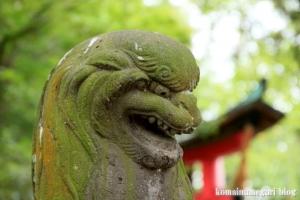 二ツ宮氷川神社(さいたま市西区二ツ宮)23