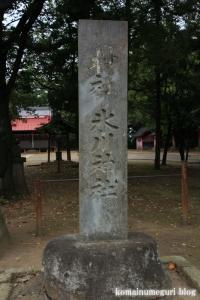 二ツ宮氷川神社(さいたま市西区二ツ宮)2