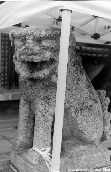 鋸尾八幡神社(堺市西区津久野町)1