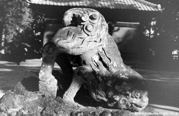 大谷口氷川神社(さいたま市南区大谷口)3