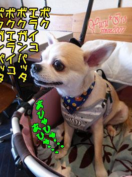 2016yuruiro_1025_k003