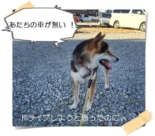 komaro201608022_3.jpg