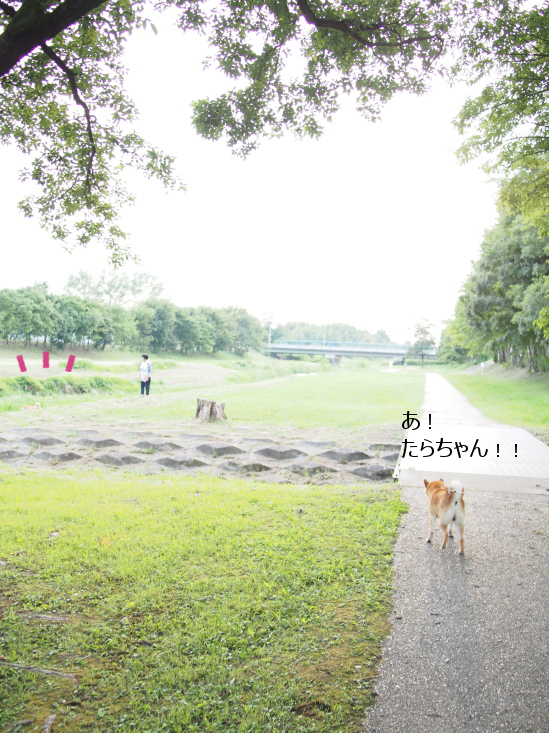 20160816-001.png