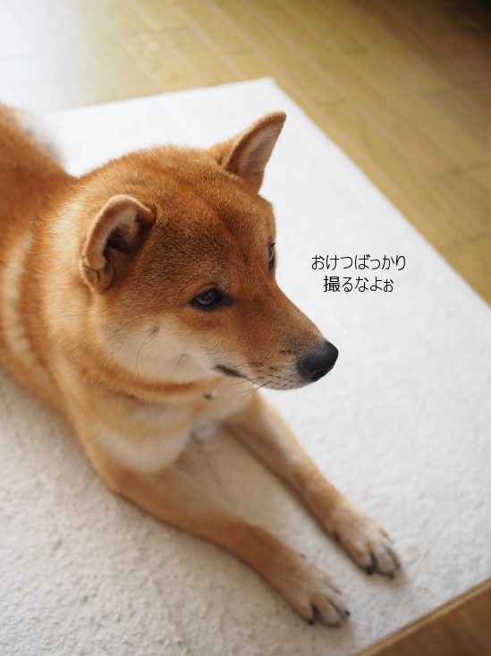 20160826-002.png