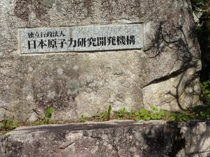 hakju5_2_81s.jpg