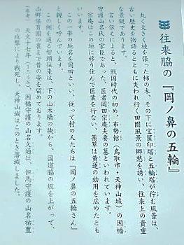 tzu9_25_54.jpg