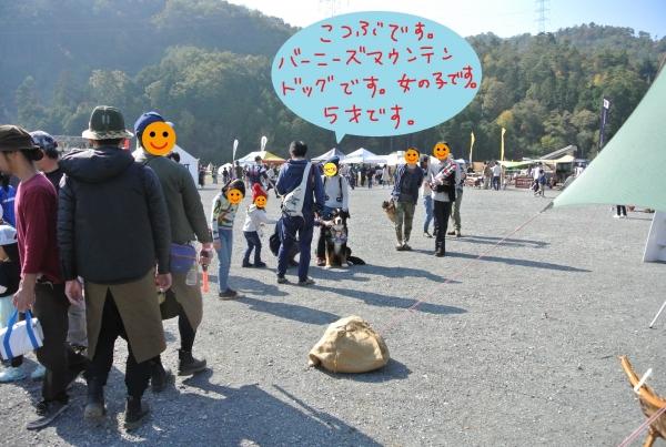 DSC_5253-1.jpg